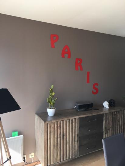 Lettre en métal alu brossé ou couleur ou miroir PARIS