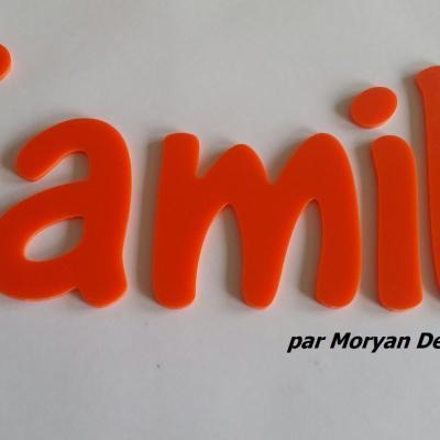 Lettre deco Family , hauteur 20 cm