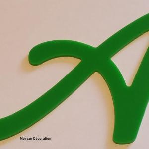 Lettre decorative plexi lombriz