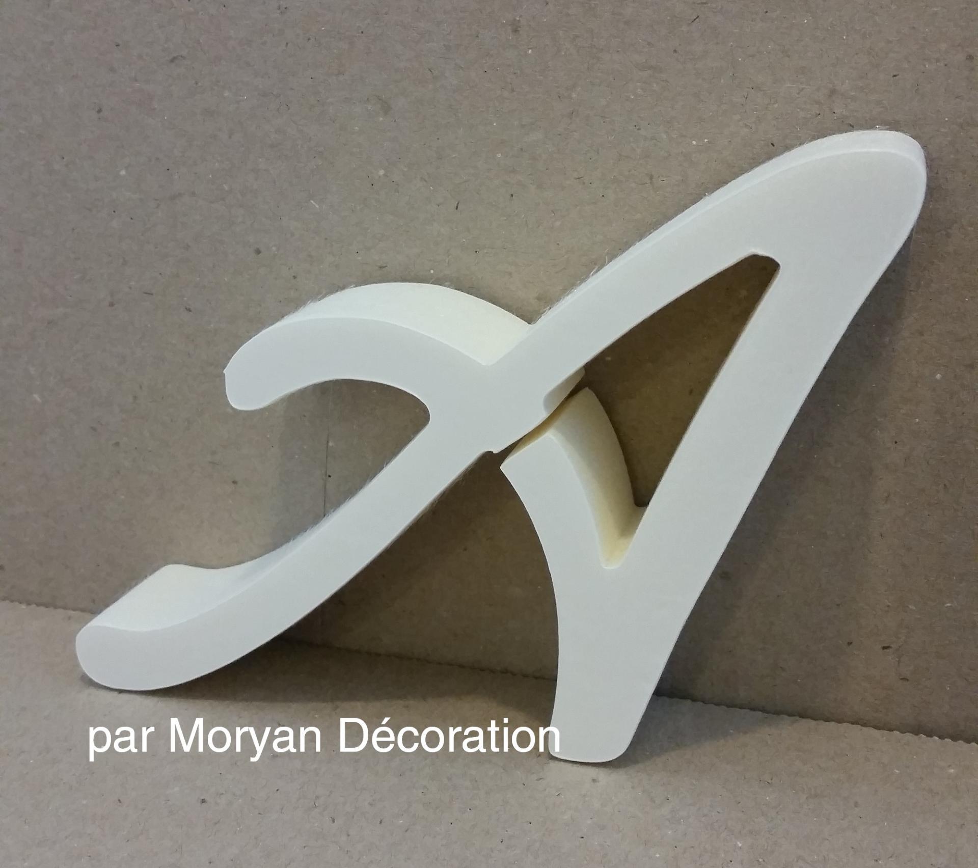 Lettre en polystyrene lombriz 1