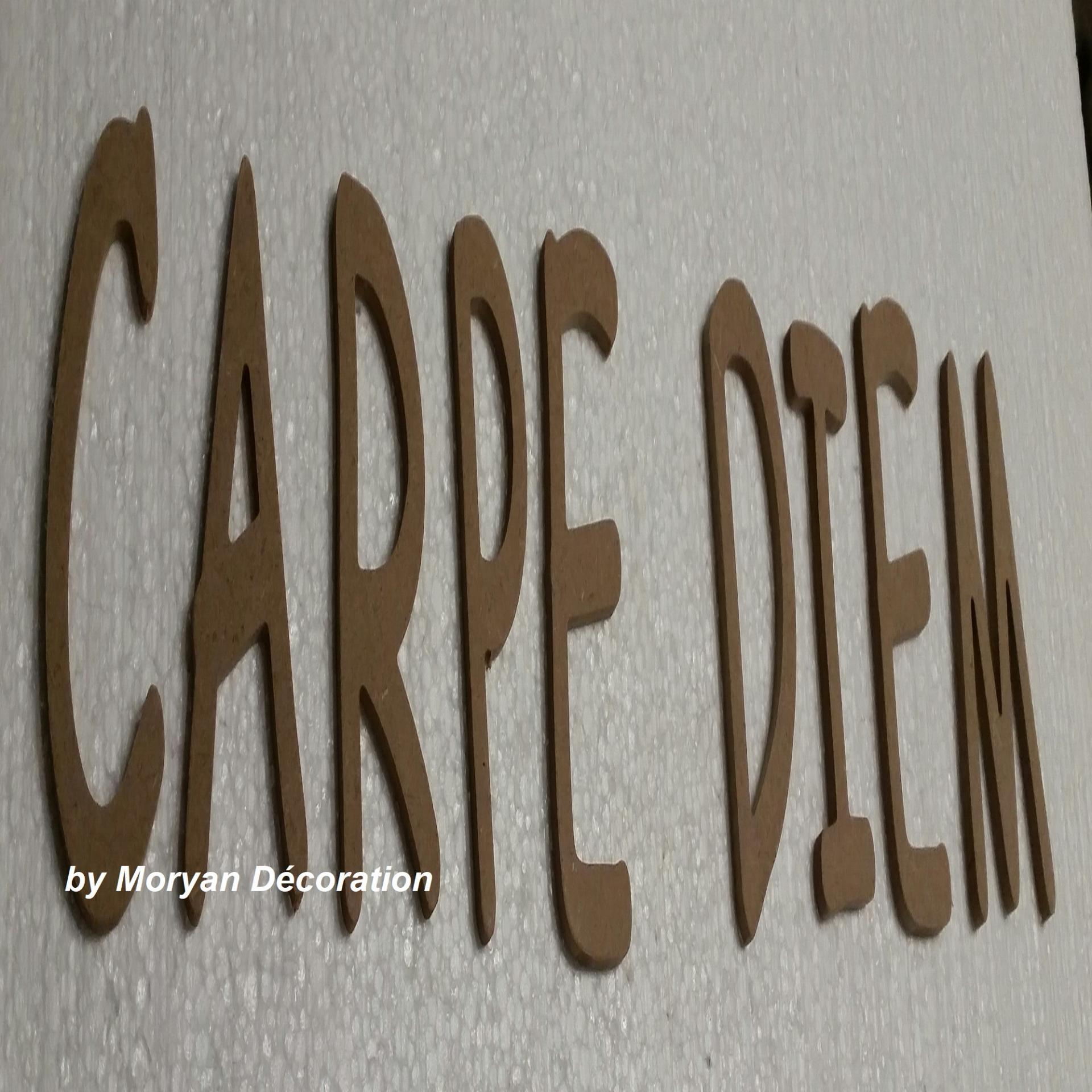 Lettres decoratives en bois a peindre ou a decorer carpe diem